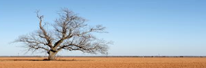 Michael Toomey Texas News: What Does Your Drought Look Like?